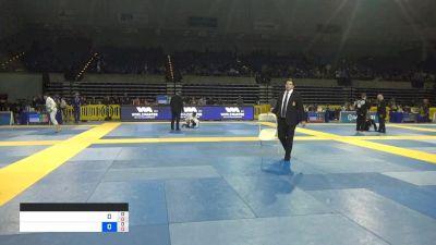 ORLANDO FERNANDO CASTILLO ANDAVI vs BRANDON WOODLY WALENSKY 2019 Pan Jiu-Jitsu IBJJF Championship