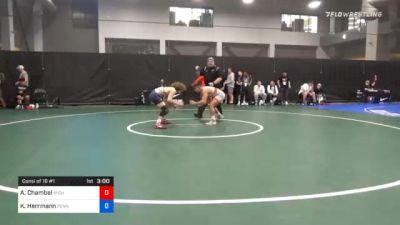 61 kg Consolation - Andrew Chambal, Michigan Wrestling CLub vs Kenny Herrmann, Pennsylvania
