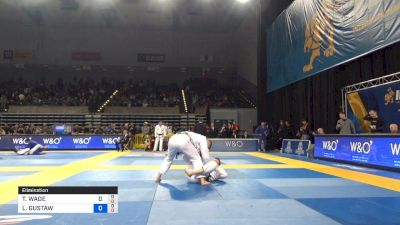 LUKASZ GUSTAW MICHALEC vs TANNER WADE RICE 2019 Pan Jiu-Jitsu IBJJF Championship