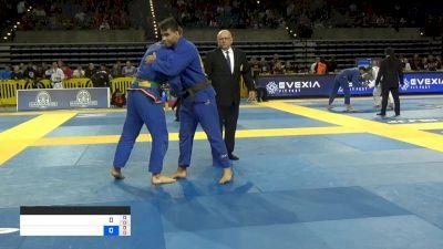 RAFAEL PAGANINI vs SHANE FISHMAN 2019 Pan Jiu-Jitsu IBJJF Championship