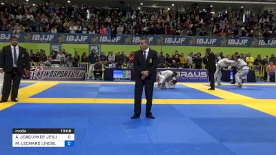 ALEXANDRE JOAQUIM DE JESUS vs MAX LEONARD LINDBLAD 2020 European Jiu-Jitsu IBJJF Championship