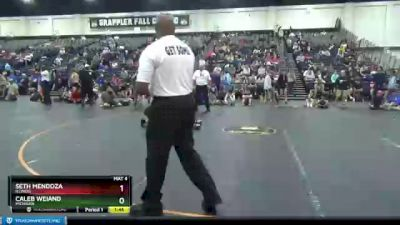 105 lbs 1st Place Match - Seth Mendoza, Illinois vs Caleb Weiand, Michigan