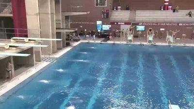 2018 OSU Invitational Diving | Big Ten Mens Swimming