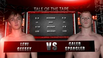 Levi Geesey vs. Caleb Spangler - Valor Fights 49 Replay