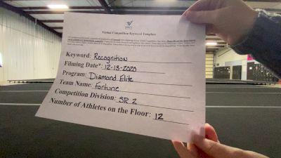 Diamond Elite - Fortune [L2 Senior - D2] 2020 America's Best Virtual National Championship