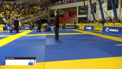 GABRIELLE MCCOMB vs CHARLOTTE VON 2019 World Jiu-Jitsu IBJJF Championship
