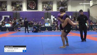 KAYLA JASMINE DEHM vs ELISABETH ANN CLAY 2019 Pan IBJJF Jiu-Jitsu No-Gi Championship