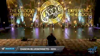 Dancin Bluebonnets - Mini Coed - Pom [2020 Mini Coed - Pom Day 2] 2020 Encore Championships: Houston DI & DII