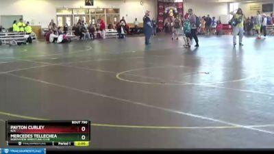 119 lbs Round 3 - Kamdyn Saulter, Summit Wrestling Academy vs Elise Pruitt, Junior Kahoks Wrestling Club