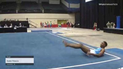 Kaleb Palacio - Floor - 2021 USA Gymnastics Development Program National Championships