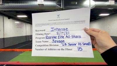 Roanoke Elite All Stars - Savage [L3 Junior - D2 - Small] 2021 Coastal at the Capitol Virtual National Championship