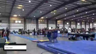 Avery Neff - Vault - 2021 Region 1 Women's Championships