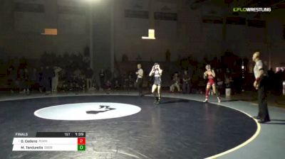 113 lbs Final - Dylan Cedeno, Fair Lawn vs Mike Tandurella, Don Bosco