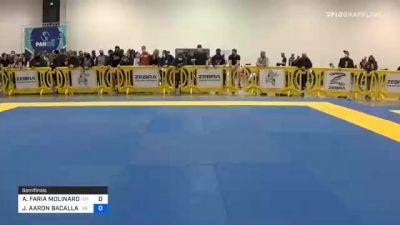 ALEXANDRE FARIA MOLINARO vs JOSHUA AARON BACALLAO 2020 IBJJF Pan No-Gi Championship