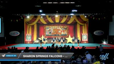 Sharon Springs Falcons - Falcons [2019 Performance Recreation - 12 & Younger (AFF) 1 Day 1] 2019 All Star Challenge: Battle Under the Big Top
