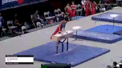 Ian Sandoval - Pommel Horse, WOGA - 2021 US Championships