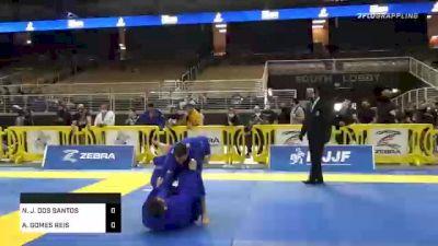 NATHAN J. DOS SANTOS vs ANDRE GOMES REIS 2020 World Master IBJJF Jiu-Jitsu Championship