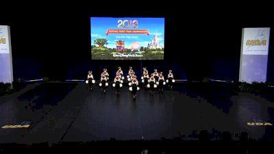 Linn-Mar High School [2018 Medium Pom Semis] UDA National Dance Team Championship