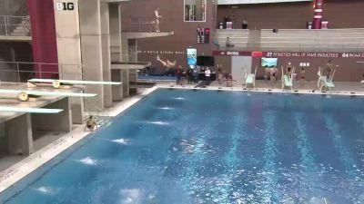 2018 OSU Invitational Diving Finals | Big Ten Men's Swim Dive