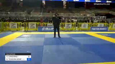 ANTHONY CANGIANO vs GERALDO TEIXEIRA GOMES 2020 World Master IBJJF Jiu-Jitsu Championship