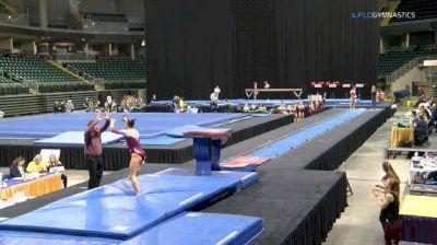 Lexy Ramler - Vault, Minnesota - GymQuarters Invitational (NCAA)