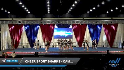 Cheer Sport Sharks - Cambridge - Zebra Sharks [2020 L3 Junior - Medium Day 2] 2020 The American Majestic DI & DII
