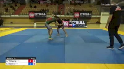 Ashley Williams vs Grzegorz Bigdon 1st ADCC European, Middle East & African Trial 2021