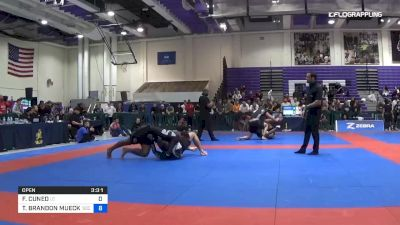 FRANCISCO CUNEO vs TODD BRANDON MUECKENHEIM 2019 Pan IBJJF Jiu-Jitsu No-Gi Championship