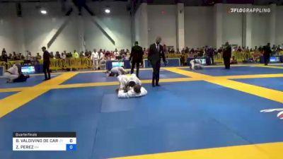 BRUNO VALDIVINO DE CARVALHO vs ZIMITRO PEREZ 2021 American National IBJJF Jiu-Jitsu Championship