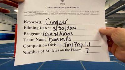 USA Wildcats - Daredevils [L1.1 Tiny - PREP] 2021 Varsity All Star Winter Virtual Competition Series: Event V