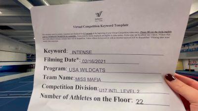 USA Wildcats - Miss Mafia [L2 - U17] 2021 Coastal at the Capitol Virtual National Championship
