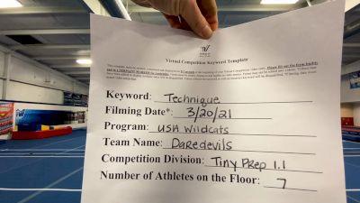 USA Wildcats [L1.1 Tiny - PREP] 2021 Varsity Virtual Competition Series - Prep & Novice II