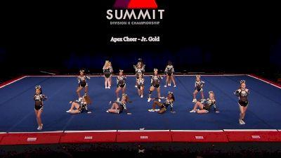 Apex Cheer - Jr. Gold [2021 L2 Junior - Small Finals] 2021 The D2 Summit