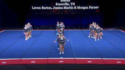Premier Athletics - Knoxville North - Cobra Sharks [2021 L4 U17 Coed Finals] 2021 The Summit