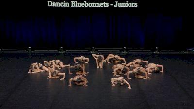 Dancin Bluebonnets - Juniors [2021 Junior Jazz - Small Finals] 2021 The Dance Summit
