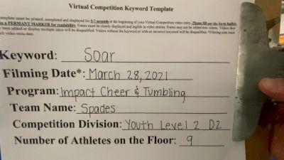 Impact Cheer & Tumbling - Spade [L2 Youth - D2 - Small] 2021 The Regional Summit Virtual Championships