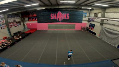 Savannah Sharks - Angel Sharks [Level 3 L3 Youth] Varsity All Star Virtual Competition Series: Event I