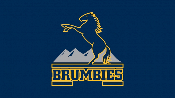 picture of Brumbies Rugby