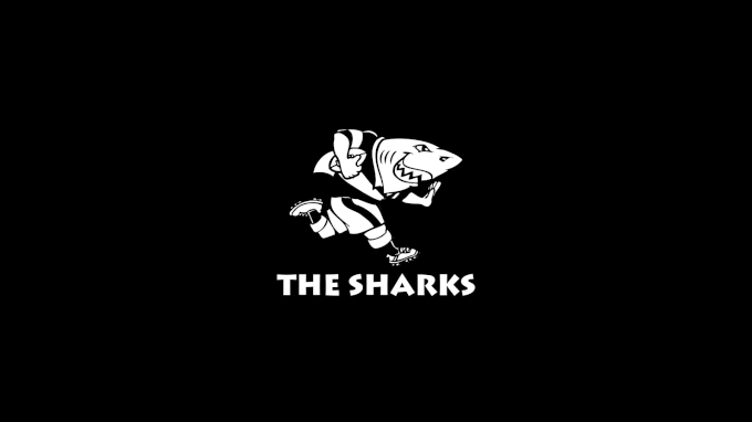 picture of Cell C Sharks