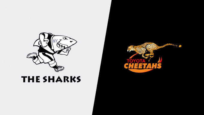 picture of 2021 Sharks vs Toyota Cheetahs