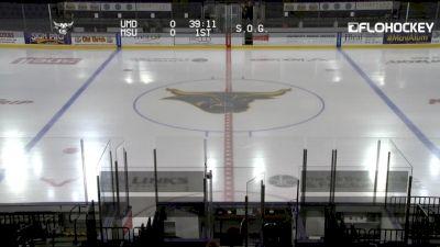 2019 Minnesota Duluth vs Minnesota State | Big Ten Women's Hockey