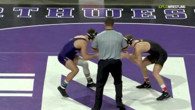 157 lb Final Ryan Deakin, Northwestern vs Kaleb Young, Iowa